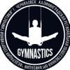 Спортивная гимнастика. г.Черняховск
