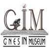 Гнесинцы в музее