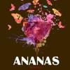 """art-cafe """"ANANAS"""""""