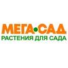 Садовый центр Мега-Сад