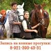 Покататься на лошадях (Питер, Ковчег-Кантри)