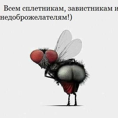 Женя Браут, Иркутск