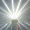 Свет маяка/Надёжный ориентир