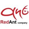 RedAnt Company