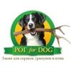 «РОГФОРДОГ» ™- рога для собак и не только!