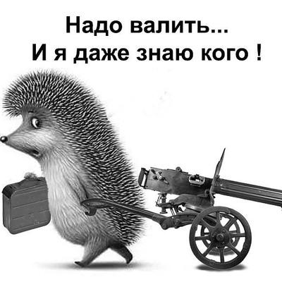 Евгений Меркулов, Елец