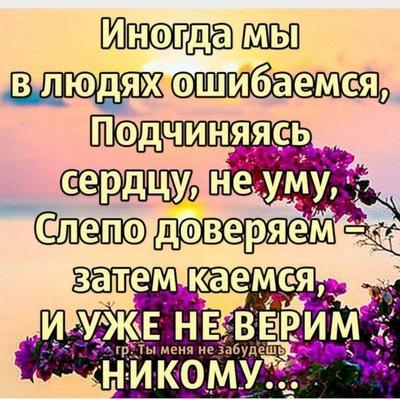 Полина Ильина, Боровичи