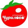 Агрохолдинг Чурилово