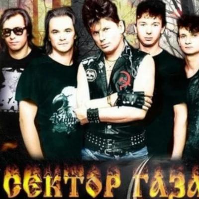 Gitarist Life