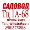 Антон Антон 1-2-03