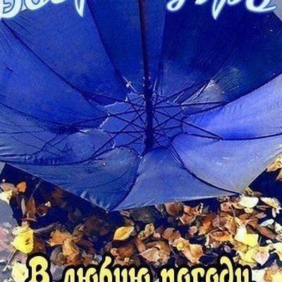 Федя Васин, Правдинск
