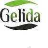 Gelida Gelida