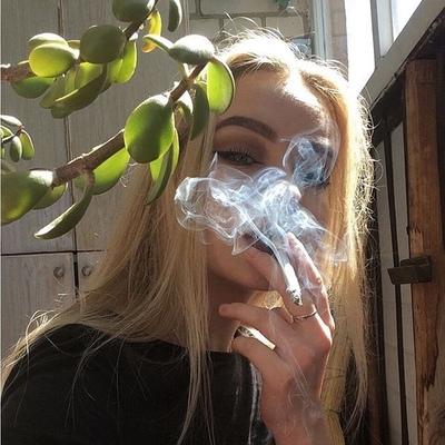 Ника Майер, Санкт-Петербург