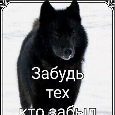 Виктория Трофимова, Здвинск