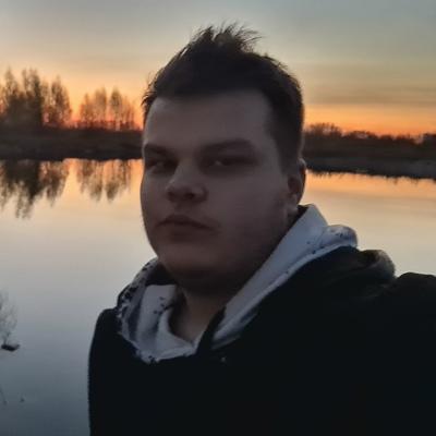Кирилл Демидов, Тула
