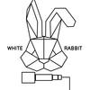 Белый кролик   Тамбов
