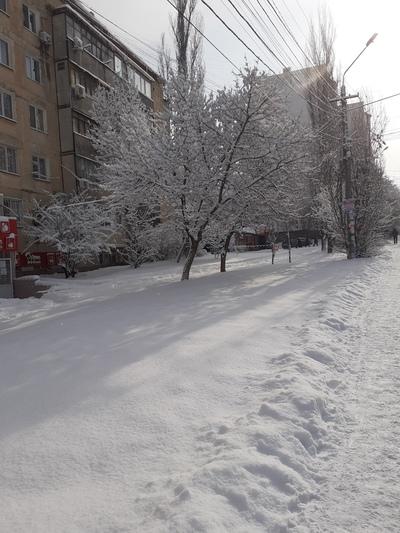 Александр Сидоров, Симферополь