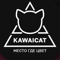 Kawaicat - создай свою индивидуальность!