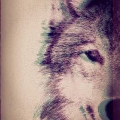 Wolf Strangest