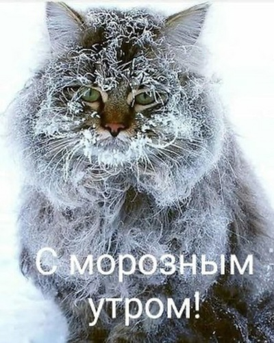 Наталья Ив, Смоленск