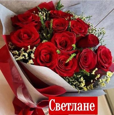Светлана Ильина, Тамбов