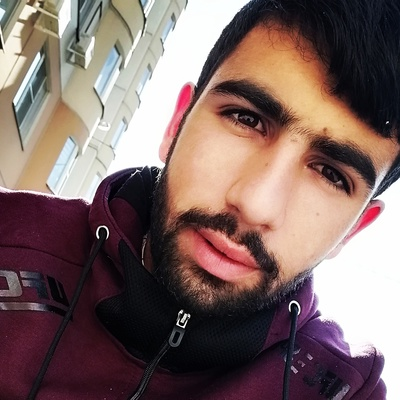 Арман Татикян