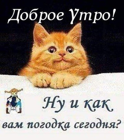 Александр Пушкин, Анива