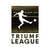Триумф лига | Кобрин