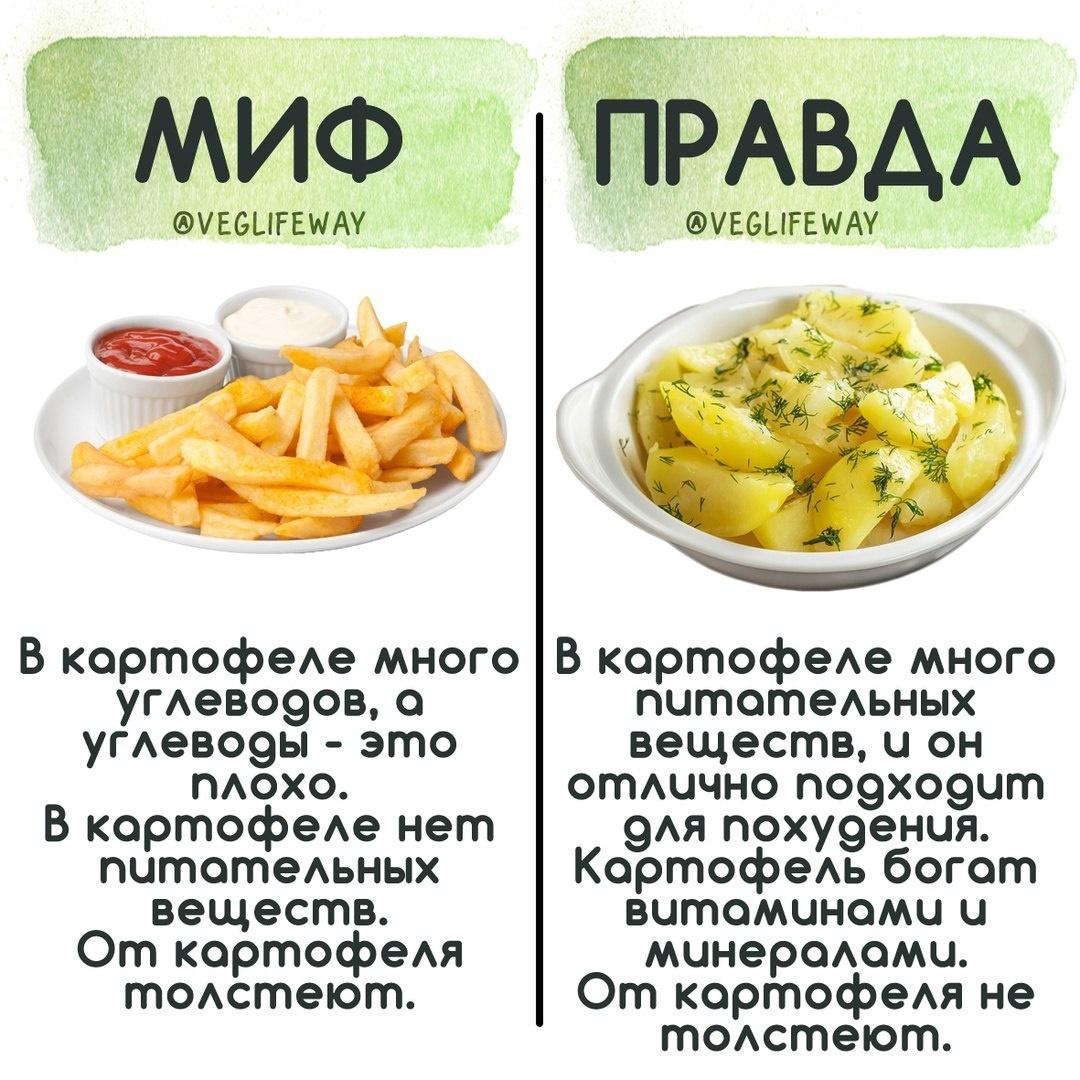 Популярные мифы о правильно питании